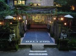 bali-zoo-2.jpg